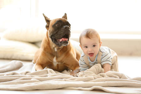 Photo pour Little baby boy with boxer dog lying on the floor at home - image libre de droit