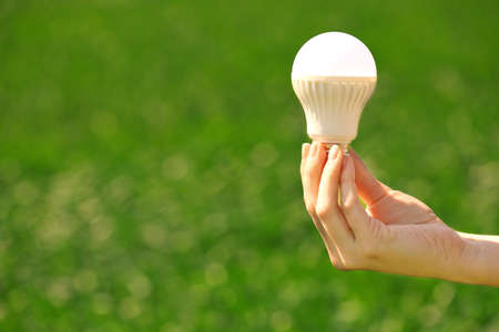 Photo pour Female hand holding light bulb on the green background - image libre de droit