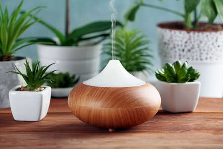 Photo for Aroma oil diffuser and plants on table - Royalty Free Image