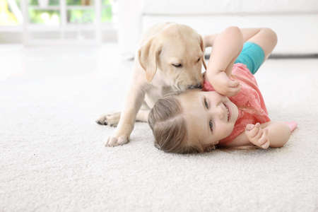 Foto de Cute child with Labrador Retriever at home - Imagen libre de derechos