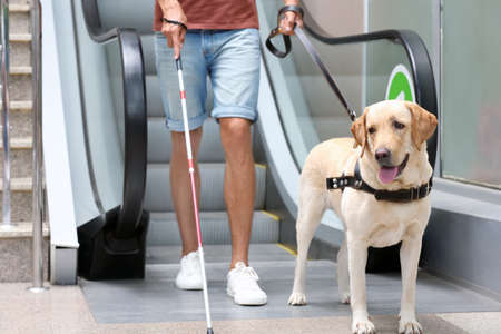 Photo pour Blind man with guide dog near escalator - image libre de droit