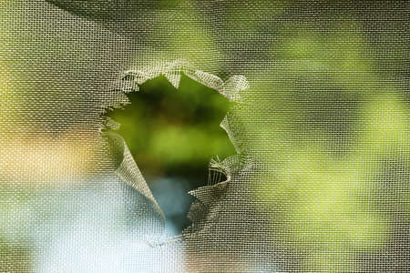 Photo for Mosquito screen with hole, close up - Royalty Free Image