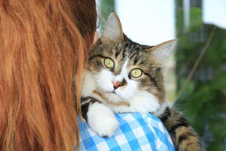 Foto de Woman holding fluffy cat. Adoption concept - Imagen libre de derechos