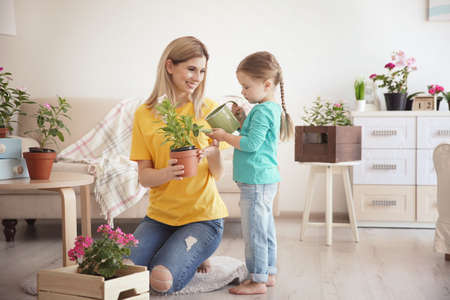 Photo for Cute little girl with mother taking care of plants indoors - Royalty Free Image