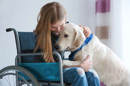 Photo pour Girl in wheelchair with service dog indoors - image libre de droit