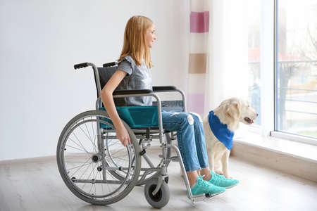 Foto de Girl in wheelchair with service dog indoors - Imagen libre de derechos