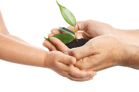 Photo pour Man passing soil with green plant to his child on white background. Family concept - image libre de droit