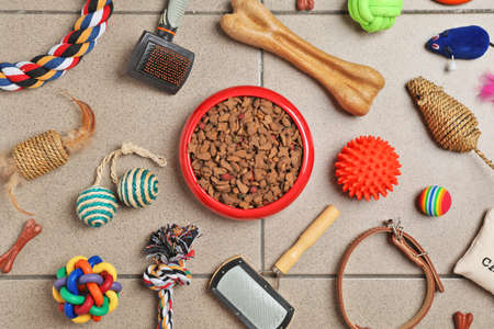 Photo pour Bowl with food for cat or dog and accessories on floor. Pet care - image libre de droit