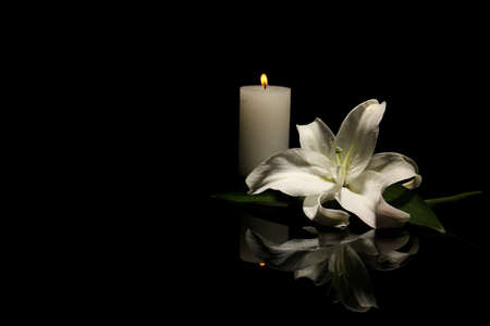 Foto de Beautiful lily and burning candle on dark background with space for text. Funeral flower - Imagen libre de derechos