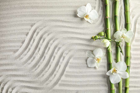 Photo pour Bamboo branches with flowers on sand, top view. Space for text - image libre de droit