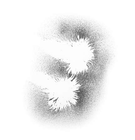 Foto de Iron powder showing magnetic lines on white background, top view - Imagen libre de derechos