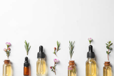 Foto de Flat lay composition with bottles of natural tea tree oil on white background - Imagen libre de derechos