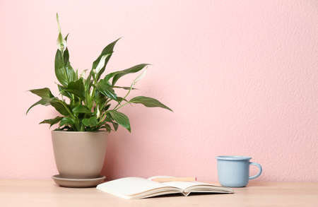 Photo pour Potted peace lily plant, cup and notebook on wooden table near color wall. Space for text - image libre de droit