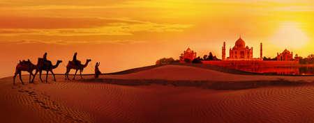 Foto de Panoramic view of Taj Mahal during sunset. Camel caravan going through the desert. India - Imagen libre de derechos