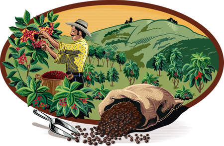 Ilustración de Oval frame, with bags of coffee and coffee bin on a plantation. - Imagen libre de derechos