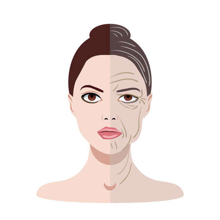 Illustration pour Vector face with two types of skin, young and old isolated - image libre de droit