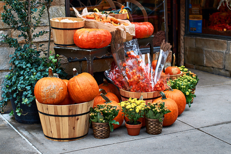 Photo pour Halloween arrangement in front of the street shop in New York with orange pumpkins, physalis alkekengi or bladder cherry or Chinese lanterns, yellow mums and other decorations - image libre de droit