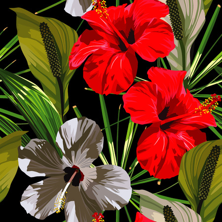 Illustration pour Red and white hibiscus flowers with green leaves on a black background. - image libre de droit