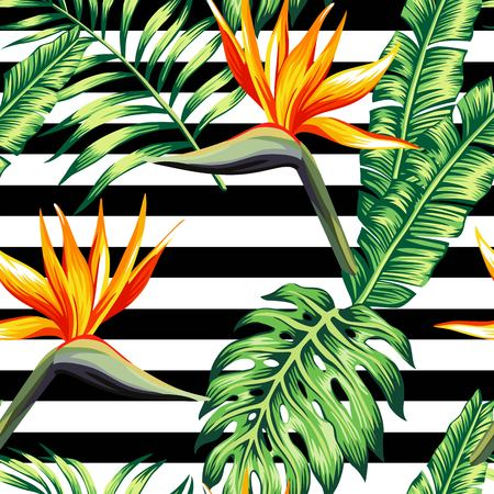Illustration for Exotic tropic plants composed of palm banana leaves, paradise Strelitzia flower on black and white stripe geometric background. Flower trendy seamless vector pattern. Hand drawn fashion wallpaper. - Royalty Free Image
