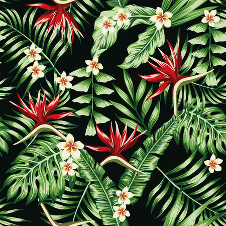 Illustration for Tropical plants leaves and flowers of the frangipani plumeria and the bird of paradise. Seamless beach pattern on black background wallpaper - Royalty Free Image