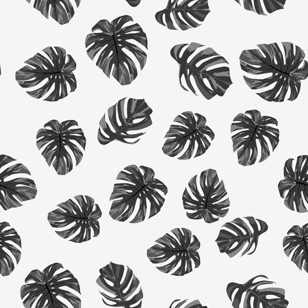 Illustration pour Grayscale tropical monstera leaves seamless pattern on the white background. Black white vector illustration - image libre de droit