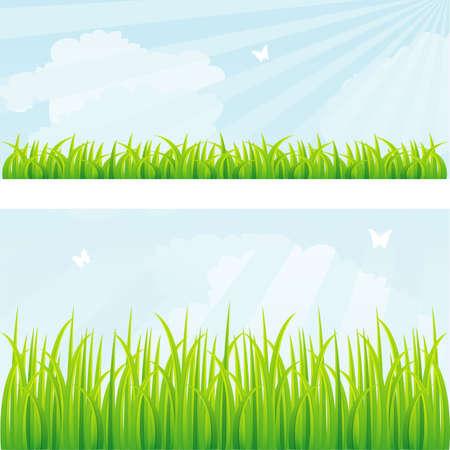 Illustration pour Vector illustration of Summer background with grass - image libre de droit