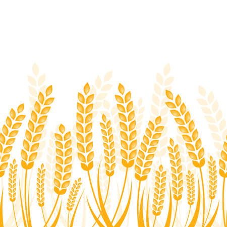 Illustration pour Vector seamless horizontal background with golden ripe ear of wheat. Abstract concept for organic products, harvest, grain, bakery, healthy food. - image libre de droit