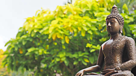 Photo for Buddha image in peaceful garden environment. - Royalty Free Image