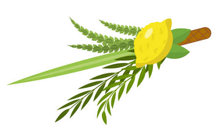 Illustration pour Sukkot set of herbs and spices of the etrog, lulav, Arava, Hadas. Isolated on white background. Vector illustration - image libre de droit