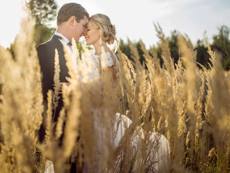 Photo for young beautiful wedding couple hugging in a field with grass eared. - Royalty Free Image