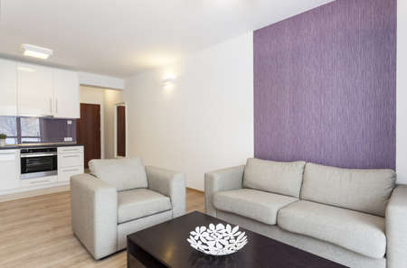 Cosy flat - grey sofa in white and violet living room