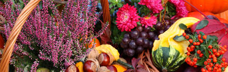 Foto de Autumn flowers, vegetables and fruits in basket - Imagen libre de derechos