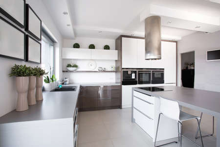 Photo pour Houseplants in exclusive kitchen in modern style - image libre de droit