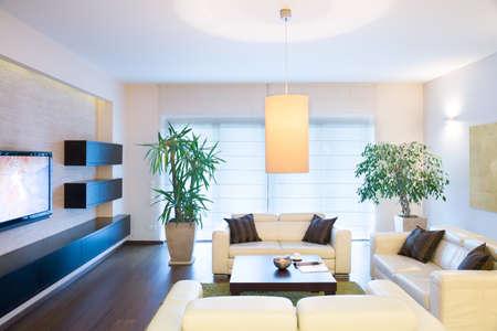 Photo pour Stylish modern tv room with comfortable couch - image libre de droit