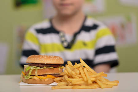 Photo pour Hamburger and french fries for unhealthy lunch - image libre de droit