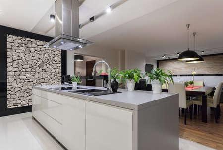 Photo pour Picture of designed kitchen with stone wall - image libre de droit
