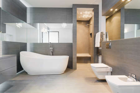 Photo pour Designed freestanding bath in gray modern bathroom - image libre de droit