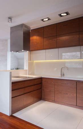 Photo pour Image of new design functional kichen interior - image libre de droit