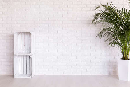 Photo pour DIY regale made from wood boxes and plant in decorative plant standing in white interior with light flooring and brick wall - image libre de droit