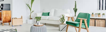 Photo for White and green design of spacious modern living room - Royalty Free Image