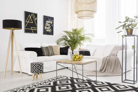 Photo pour Black and white living room with sofa and pattern carpet - image libre de droit