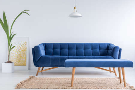 Photo pour White apartment with blue sofa, bench, rug and green plant - image libre de droit