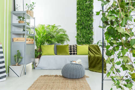 Foto de Botanical living room with grey sofa, green pillows and bookcase - Imagen libre de derechos