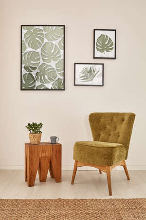 Foto de Green and brown apartment with wooden furniture and monstera accessories - Imagen libre de derechos