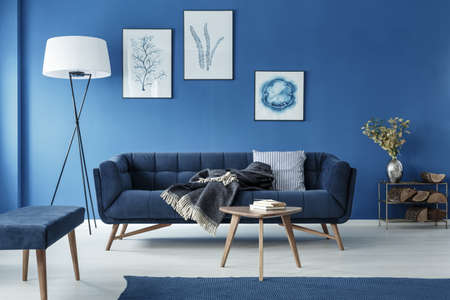 Photo pour Blue stylish elegant retro living room with sofa - image libre de droit