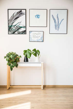 Foto de Plants standing on small table under posters on the wall - Imagen libre de derechos