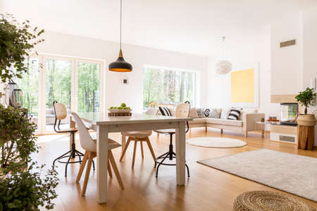 Photo pour Plants in spacious white living room connected with dining hall - image libre de droit