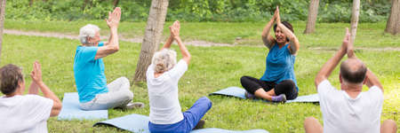 Photo pour Regular physical activity in the city park for seniors - image libre de droit