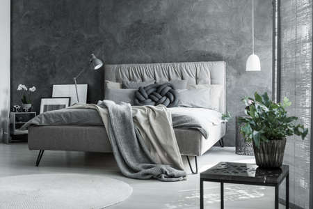 Foto de Contemporary master bedroom with scandinavian gray decor, plant and handmade pillow - Imagen libre de derechos