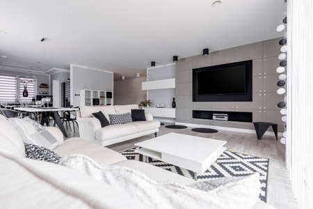 Photo pour Gray living room in spacious high-end monochromatic loft - image libre de droit